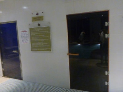 The sauna and steam rooms