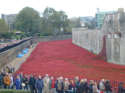 The queues at the Tower of London near the Poppy display.