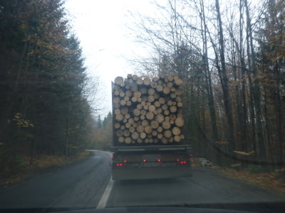 The charm of the drive to Cacia - rural Romania at its best, stuck behind a juggernaut of logs.