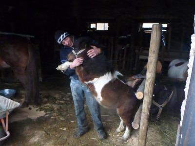 Tudor with a donkey in his farm.