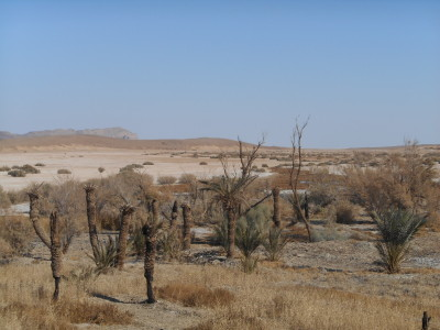 Khalate Talkh Desert Oasis in Iran