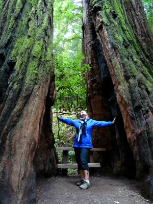 World Travellers:Stephanie Mayo from The World As I See It at Muir Woods