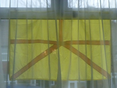 The Austenasian Flag viewed from Parliament Hall in Wrythe.