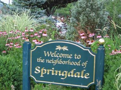 Springdale Neighbourhood