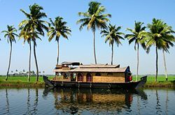 The wonder of Kerala, India
