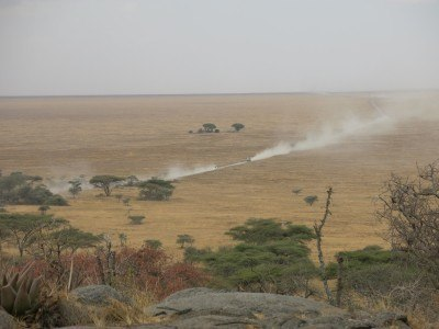 The Serengeti goes on for miles - it's huge!