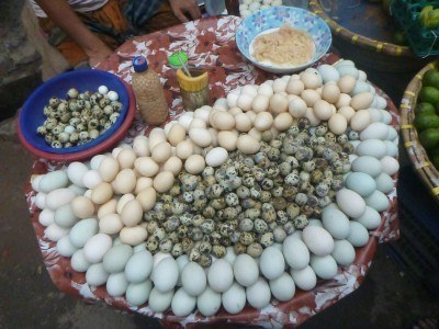 Eggs in the markets of Old Dhaka