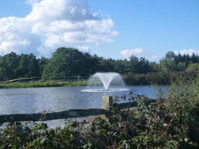 A fountain in the countryside at the Cottesmore