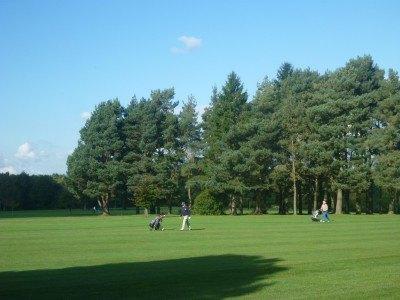 Golfers out enjoying their day