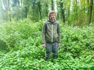 Nick in the nettles