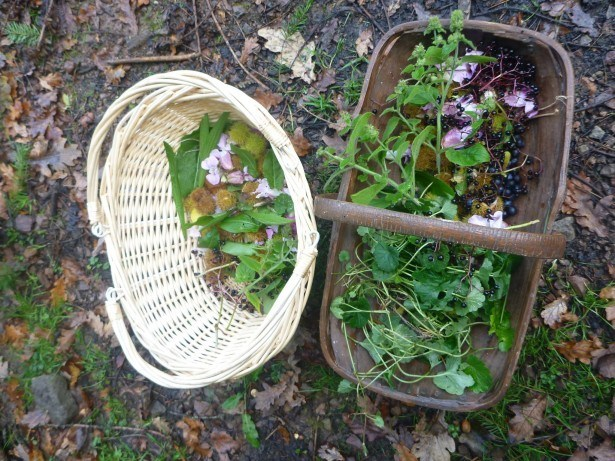 The Benefits of Growing, Making, and Cooking Your Own Food