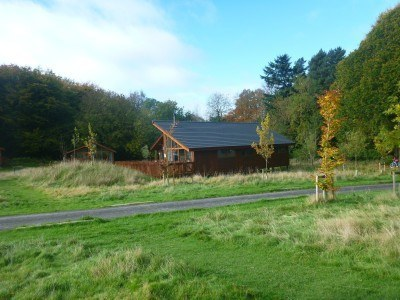 My cabin in the Forest of Dean