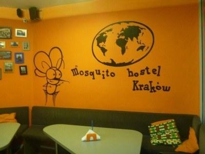Mosquito Hostel, Krakow, Poland