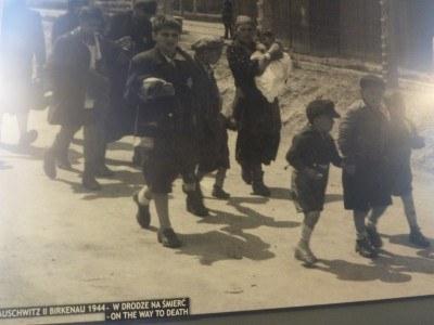 Women and children arrive at Auschwitz.