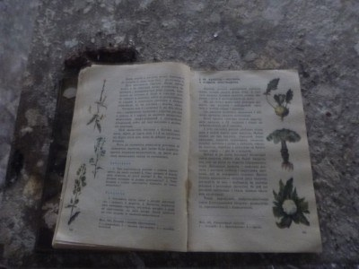An open book in Middle School number 3, Pripyat, Ukraine, Chernobyl Exclusion Zone
