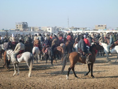 Buzkashi, Afghanistan's National Sport