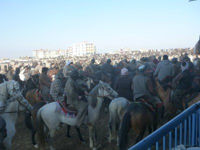 My view of the Buzkashi from the Grandstand