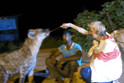 One of my crazy moments in Africa - feeding hyenas hand to mouth and mouth to mouth