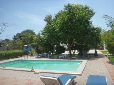 Swimming pool time at Banana Lodge Apartments