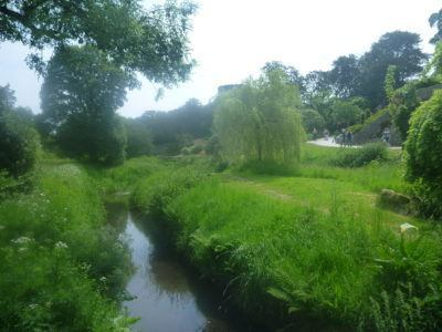 A river at Blarney Castle and Gardens