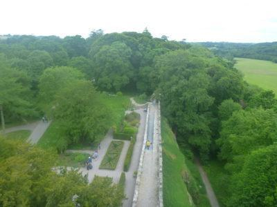 View from the top of Blarney Castle