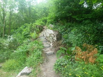 The wishing steps