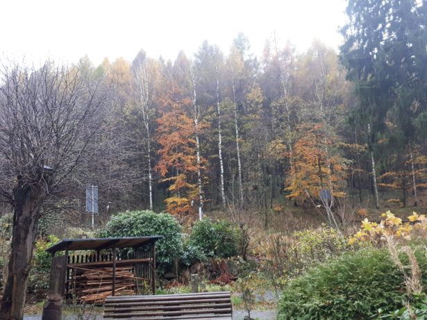 radauer wasserfall bad harzburg