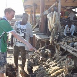 Backpacking in Togo: Touring the World's Largest Fetish Market in Akodessawa, Lomé